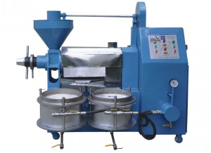 A groundnut processing machine