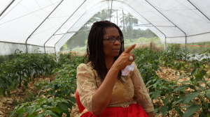 Hon. Nkoyo Toyo in the farm during the interaction with CrossRiverWatch