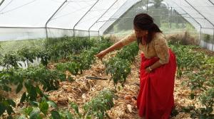 Nkoyo Toyo in the farm
