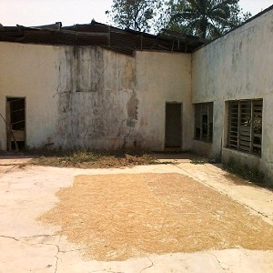 Main courtroom now used for sun drying parboiled rice before milling