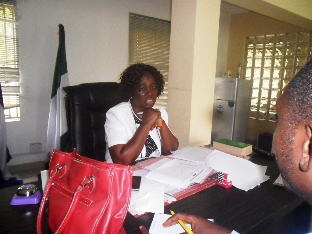 Rosemary Atsu-Arop, State Electrification Agency Director General during the briefing