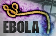 Suspicious Death In Calabar Not Ebola – WHO