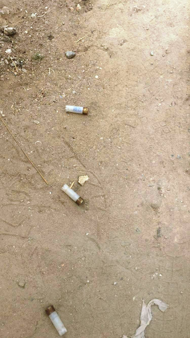 expended bullets picked from the ground