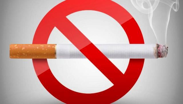 no tobacco day2