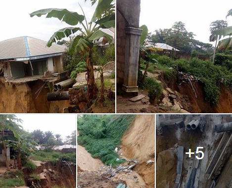 Open Letter To The Commissioner For Environment In Cross River State BY IFERE PAUL