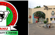 UNICAL Senior Staff Union Sack Chairman