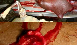 Picture mix of victims of stray bullets in the Alphonsus Ogar Eba defection from PDP to APC in Yala